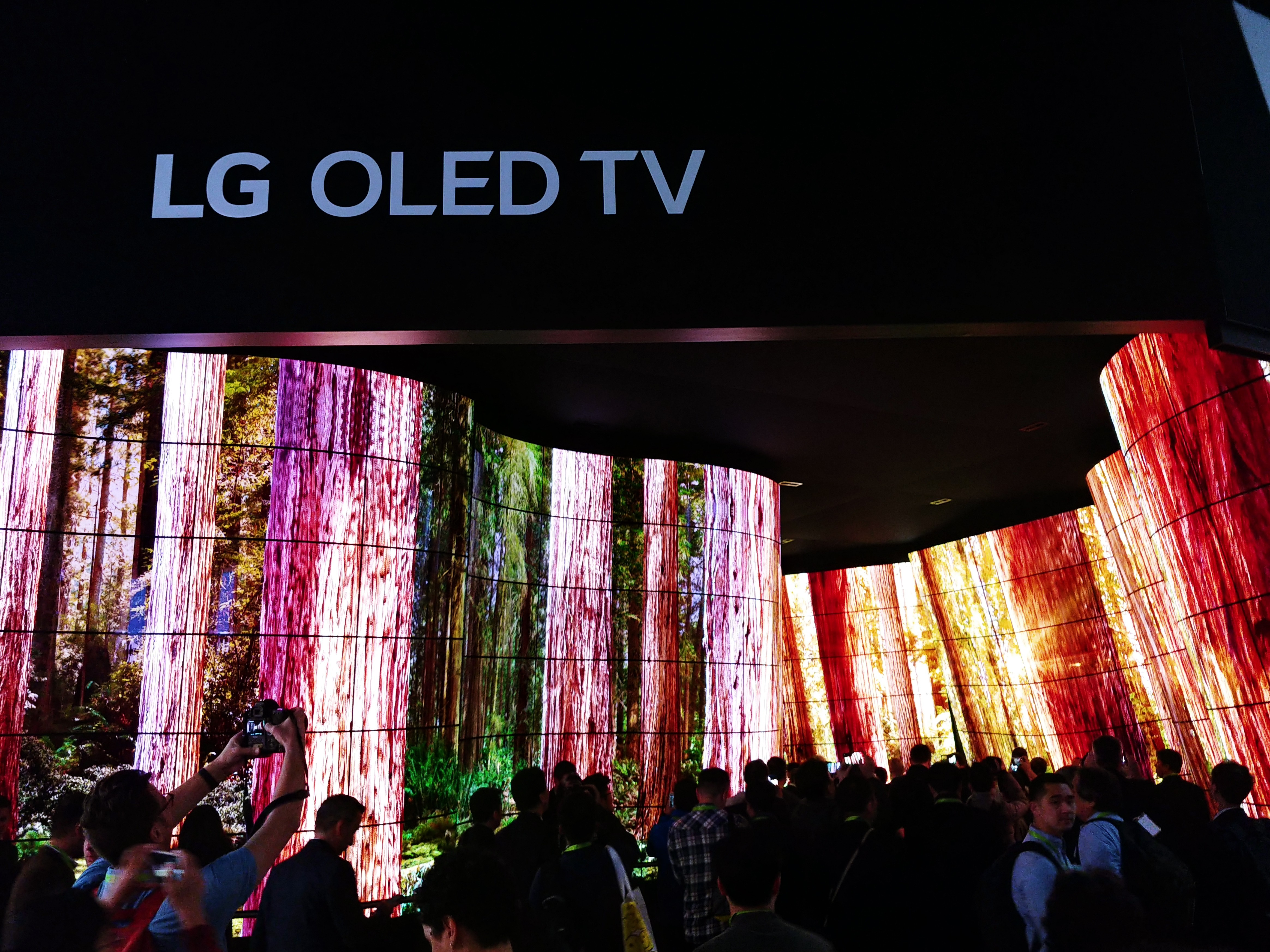 People standing before the entrance of the LG OLED Canyon and taking photos, LG OLED TV sign is visible above the canyon.