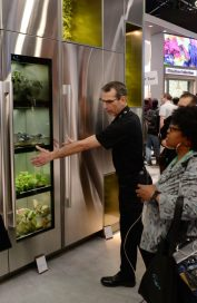 An LG employee demonstrating LG's unique indoor gardening appliance to visitors at CES 2020