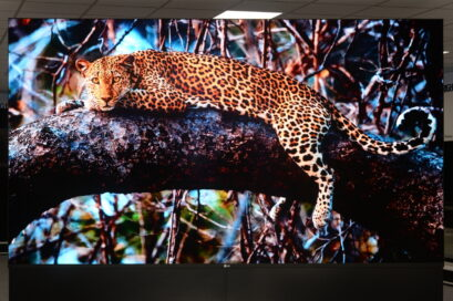 A front view of a leopard lying on a tree displayed on LG MAGNIT which provides superior picture quality, expandability and a convenient set-up