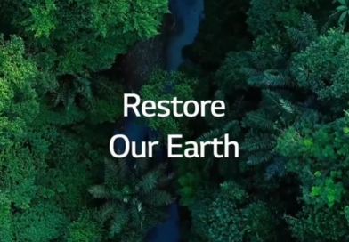 A birds-eye view of a rainforest with a stream running through it and the phrase
